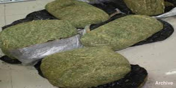 Two drug dealers arrested, 115 kg of hashish seized in Homs