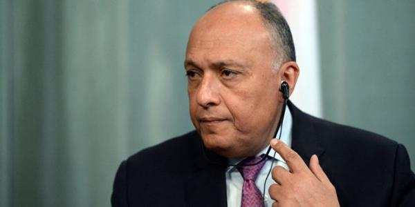 Egypt reaffirms support for political solution to crisis in Syria