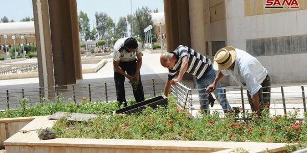 Work teams engage in hectic efforts to showcase beauty of green spaces in Damascus Fairground City