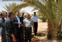 Minister of Agriculture checks on the desert area