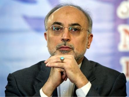Salehi:Iran\'s supportive stance towards Syria is a principled one